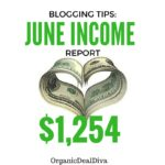 BLOGGING TIPS and Income report