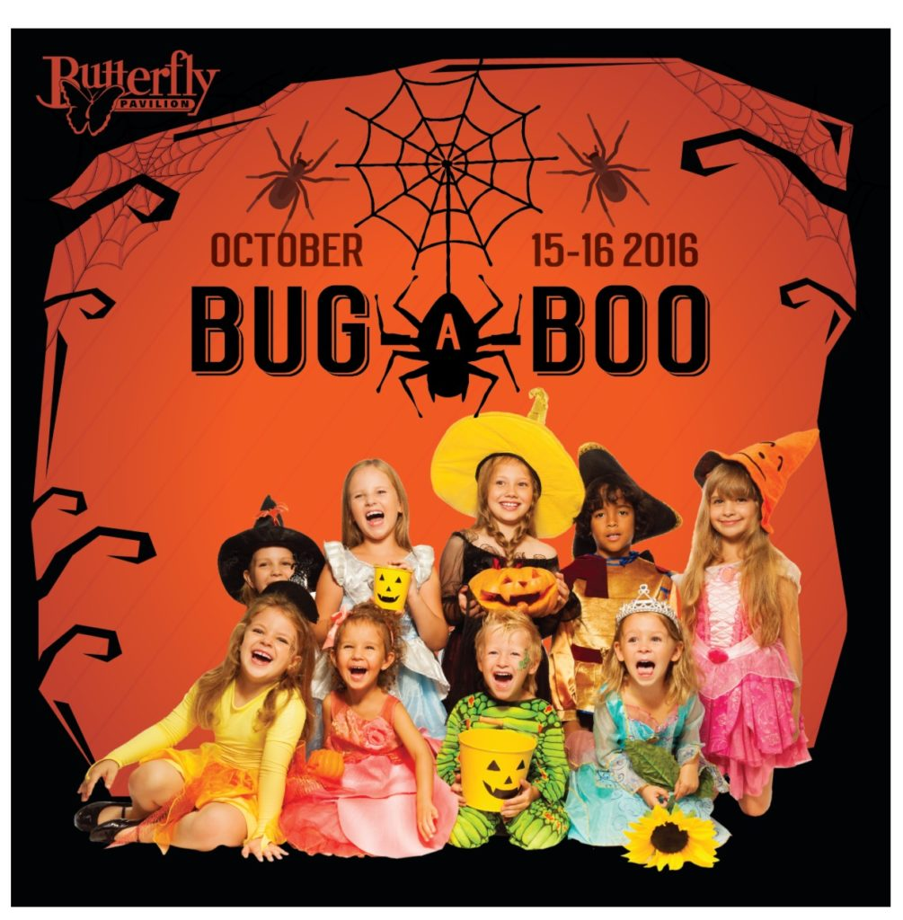 butterfly-bug-a-boo