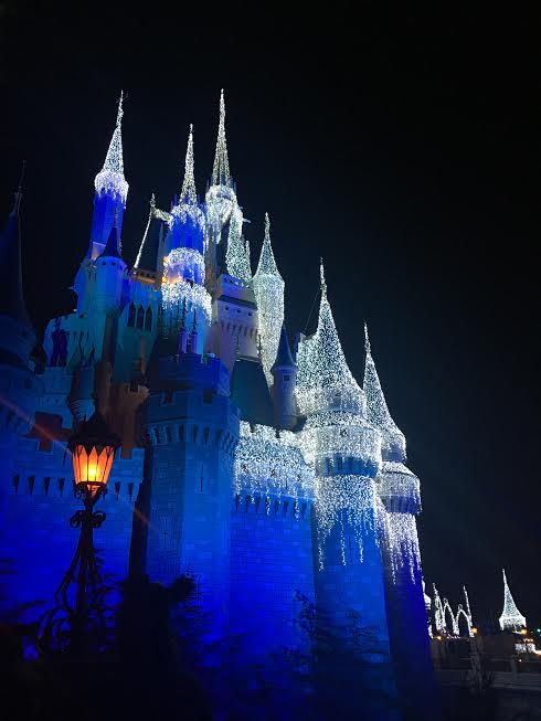 Frozen Castle